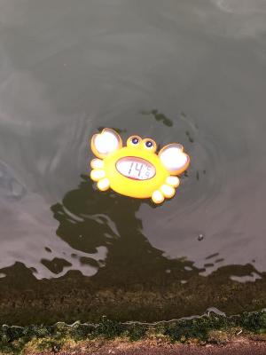 Baignade d 39 automne dans le canal de l 39 ourcq monswim for Chevilly larue piscine